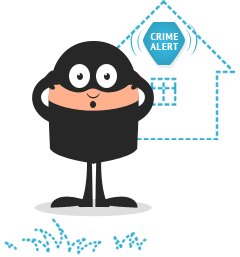 Audible Only Burglar Alarms